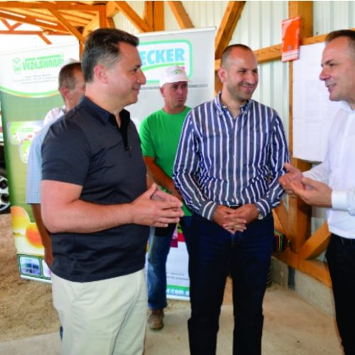 Investim i ri i kompanisë vezë shari me mundësi të reja për punësim
