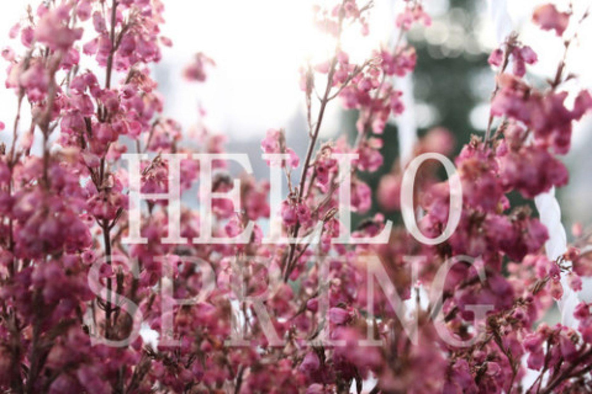 Sot është dita e parë e pranverës