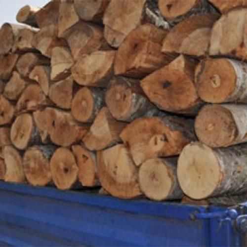Pagoi 10 metra, mori vetëm 5 – Ja teknika e mashtruesit të shitësit të drunjëve