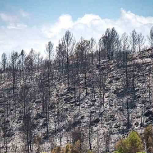 QMK: Zjarret në Makedonski Brod janë shuar tërësisht
